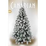 Giocoplast Natale ALB. Invervated canadese cm, multicolore
