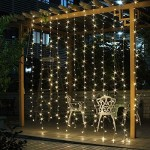 Salcar Tenda Luminosa tenda catena LED 3 * 3 metro 300 LEDs illuminano tenda per le feste di Natale, Decorare, Party, 8 programmi scelta di (bianco...