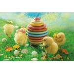 Silikomart 194922 - Stampo in silicone per uova di Pasqua in 3 d, dimensioni 305 x 305 x 15 mm, colore: Marrone