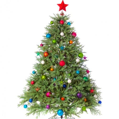 Alberi di Natale (119)